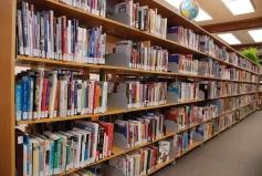 library organization shelves
